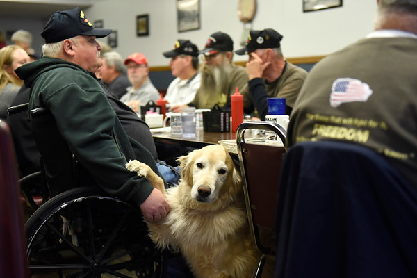 BEN MIKESELL | THE GOSHEN NEWS <br /> Storm, a nine-year-old service dog, places his paw on Vietnam veteran Jerry Buss, of Elkhart, during the weekly veteran's breakfast Nov. 8 at Evan's Sidewalk Cafe in Bristol. Buss and fellow veteran Jan Bean, started the breakfast group in 1998 as a way to keep in touch and help each other with veterans issues.