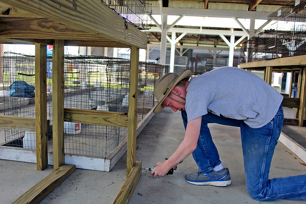 CAMDEN CHAFFEE | THE GOSHEN NEWS<br /> Wyatt Hanaway helps put together display counters in the poultry barn during the LaGrange County 4-H Fair set-up Tuesday.