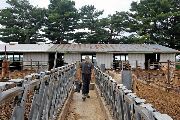 CAMDEN CHAFFEE | THE GOSHEN NEWS<br /> LaGrange dairy farmer, Riley Lewis, feeds his cows on his farm on Wednesday, July 3.