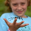 BEN MIKESELL | THE GOSHEN NEWS<br /> Second-grader Olivia Adcock holds a dragon fly in her in hand Thursday during Bright Time Summer Camp week at Bethany Christian Schools.