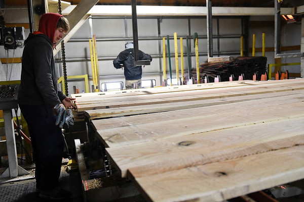 BEN MIKESELL | THE GOSHEN NEWS<br /> Wible Lumber worker Alex Dollar runs the assembly line Wednesday afternoon at the lumber mill in South Milford, Ind.