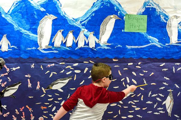BEN MIKESELL   THE GOSHEN NEWS<br /> Kindergartner Layne Miller explains the emperor penguin's arctic habitat during the kindergarten showcase Thursday evening at Chamberlain Elementary School.