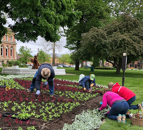 "SUSIE NEFF | CONTRIBUTED<br /> Volunteers plant thousands of plants into a quilt garden at the Elkhart County Courthouse lawn in Goshen Monday. The quilt garden is called ""The Wild Blue Yonder and is based on the ""Flying Geese"" quilt pattern. The plants are coleus, Dusty Miller and petunias. Clockwise, from left, are Phil Straw, Annette Webb, Ellen Straw and Tamie Herr. Goshen Historical Society member Ursula Mars, who was also at the planting with fellow members, said they had plenty of help with about seven or eight volunteers from Interra Credit Union working in the morning and a county highway department employee Rex Lechlitner delivering the plants and then helping with hauling away and cleaning up the site."