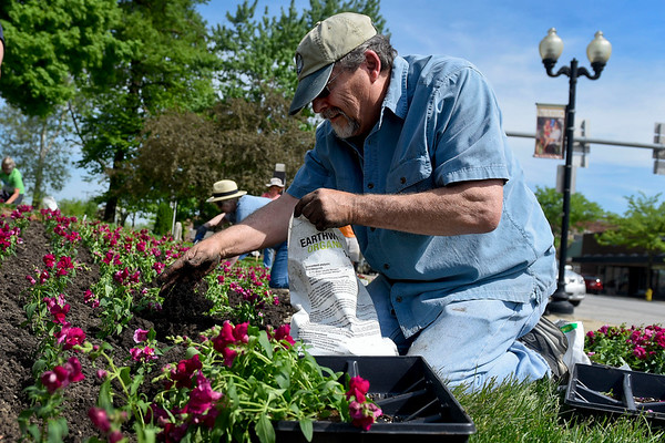 BEN MIKESELL | THE GOSHEN NEWS<br /> Larry Neff with the Goshen Historical Society plants snapdragons while installing the quilt garden Thursday morning at the Elkhart County Courthouse. Throughout the rest of the week, various quilt gardens will be planted across Elkhart County.