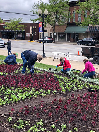 "SUSIE NEFF | CONTRIBUTED<br /> Volunteers plant thousands of plants into a quilt garden at the Elkhart County Courthouse lawn in Goshen Monday. The quilt garden is called ""The Wild Blue Yonder and is based on the ""Flying Geese"" quilt pattern. The plants are coleus, Dusty Miller and petunias. From left are Annette Webb, Phil Straw, Ellen Straw and Tamie Herr."