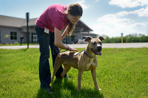 BEN MIKESELL | THE GOSHEN NEWS<br /> Volunteer Stacy West, of Goshen, takes Arabella on an afternoon stroll Tuesday outside the Humane Society of Elkhart County.