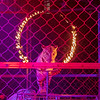 Joseph Weiser | The Goshen News<br /> A Siberian tiger jumps through the ring of fire during the Shipshewana Majestic: The Circus at the Michiana Entertainment Center on Monday. The Circus will be performed from Monday, October 28 through Saturday, November 2nd.