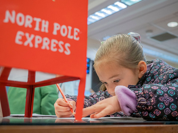 Elsa Durnell, 6, of Goshen writes her letter to Santa at the Goshen Public Library Friday.