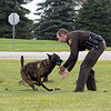 Joseph Weiser | The Goshen News<br /> Elkhart County Sheriff  K9 Polaris and K9 partner Jamie Sterling plays fetch at Bennington Marine in Elkhart Monday. Bennington Marine, Godfrey, and Hurricane of Polaris covered the cost of the Polaris to a tune of $6,500.