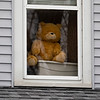A bear sits in the window at 630 S. 7th. St., Goshen  for the Bear Parade in Goshen Monday morning. Residents in the community are putting bears in their windows to give walkers something to look for while exercising during the stay at home quarantine period.