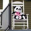 A pair of panda bears sit on the porch at 1111 S. 8th. St., Goshen  for the Bear Parade in Goshen Monday morning. Residents in the community are putting bears in their windows to give walkers something to look for while exercising during the stay at home quarantine period.