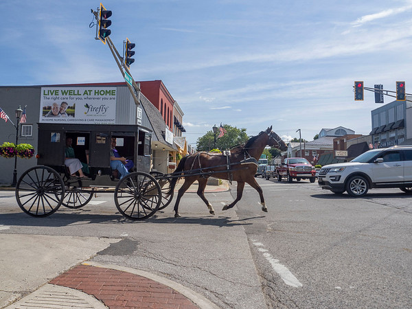 Joseph Weiser | The Goshen News <br /> A buggy crosses through the intersection of Warren Street and Main Street in Middlebury .