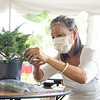 Workshop participant Agnes Moy-Sarns forms a bonsai tree Saturday, Aug. 1 at Wellfield Botanic Gardens during the Bonsai Show in Elkhart.