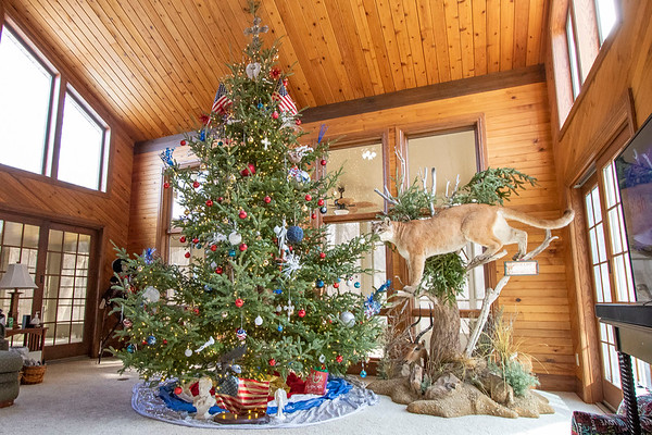 A decorated their Christmas tree in a red, white, and blue tree to represent America at Phil Wogoman and Natalie Kochanowski's home at Thursday in Millersburg.