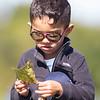 Mateo Horta, 4, of Goshen, picks up a leaf Friday at Fidler Pond in Goshen.