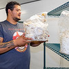 Myco Mushrooms LLC owner Jared Bell holds a bag of mushrooms Thursday at the new Myco Mushroom Farm facility at 722 Graywood Ave. in Elkhart.
