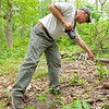 Jerry Johnson, of North Webster, points out a plant along a trail at the Wawasee Area Conservancy located at 11586 IN-13 in Syracuse.