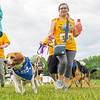 Kimberly Murphy (155) runs with her dog in the 2021 Paws for a Cause 5K & 1 Mile Strut your Mutt Ð Run/Walk event Saturday at  Oxbow Park in Goshen.