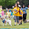 Andrea Cantillo (449) and a group of participants approach the finish line in the 2021 Paws for a Cause 5K & 1 Mile Strut your Mutt – Run/Walk event Saturday at  Oxbow Park in Goshen.