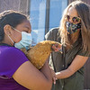 Melissa Moreno, left, holds a chicken with assistance from Bethany Christian Schools Food Service Director Tara Swartzendruber-Landis Wed., Sept.1 in the chicken coop at Bethany Christian Schools in Goshen.