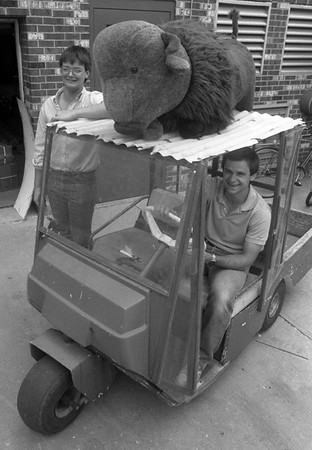 THE GOSHEN NEWS   JUNE 18, 1988<br /> It's amazing what some people find in the trash. Ryell Bontrager, standing and Ken Miller, driving the cart, found a stuffed buffalo in the garbage, giving the maintenance workers at Greencroft Retirement Center Friday great cart ornament.