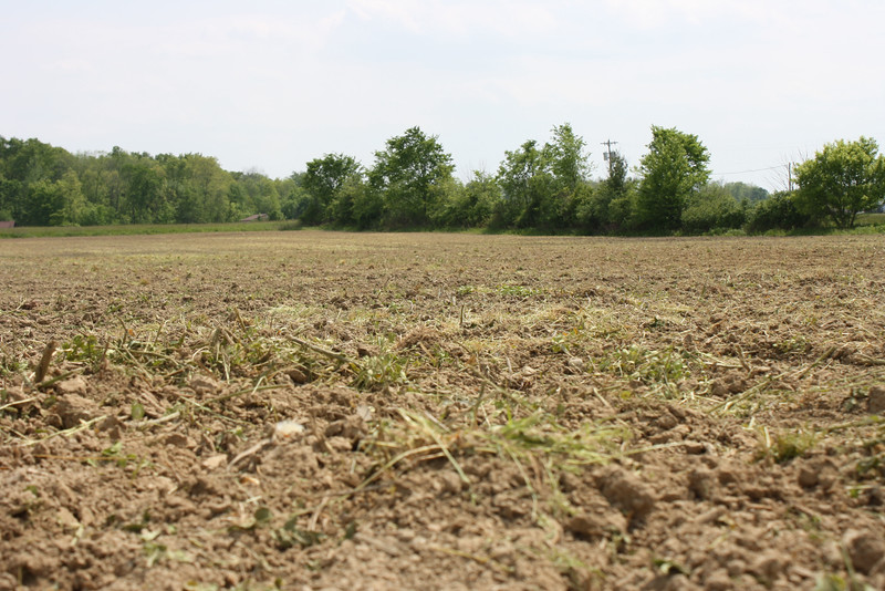 HALEE HEIRONIMUS / GAZETTE Corn was planted on this land in Penfield Township on Wednesday afternoon.