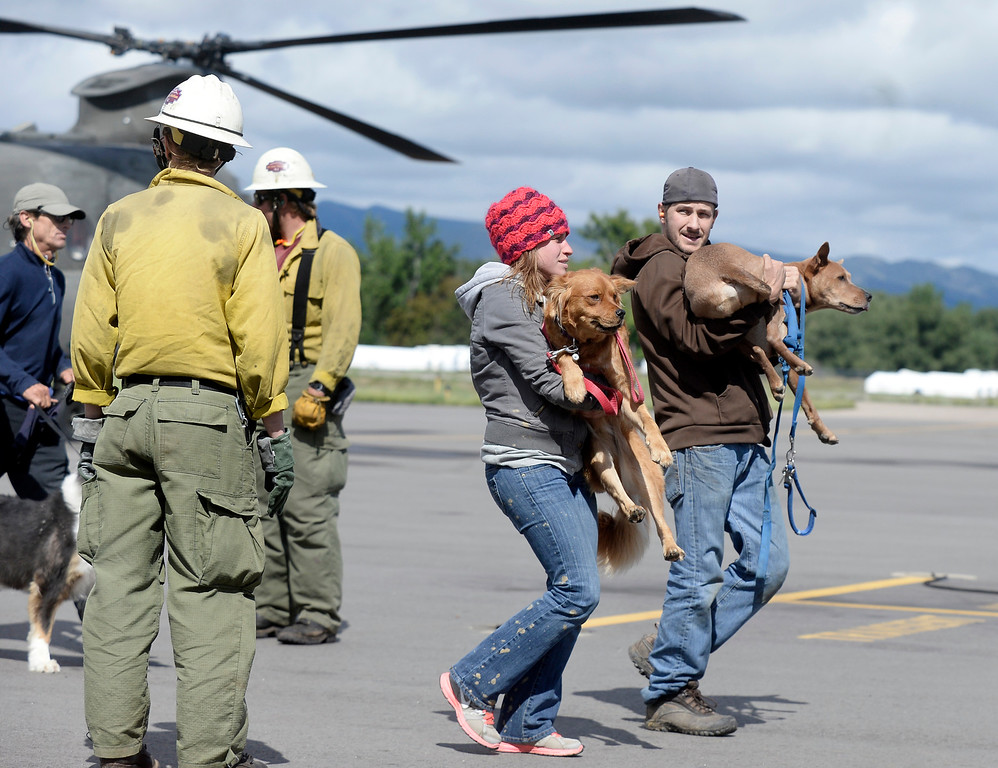. Evacuees carry their dogs towards an airplane hangar after being rescued by helicopter from Pinewood Springs on Monday, Sept. 16, at the Boulder Municipal Airport in Boulder. For more photos and video of the flood rescue go to www.dailycamera.com Jeremy Papasso/ Camera