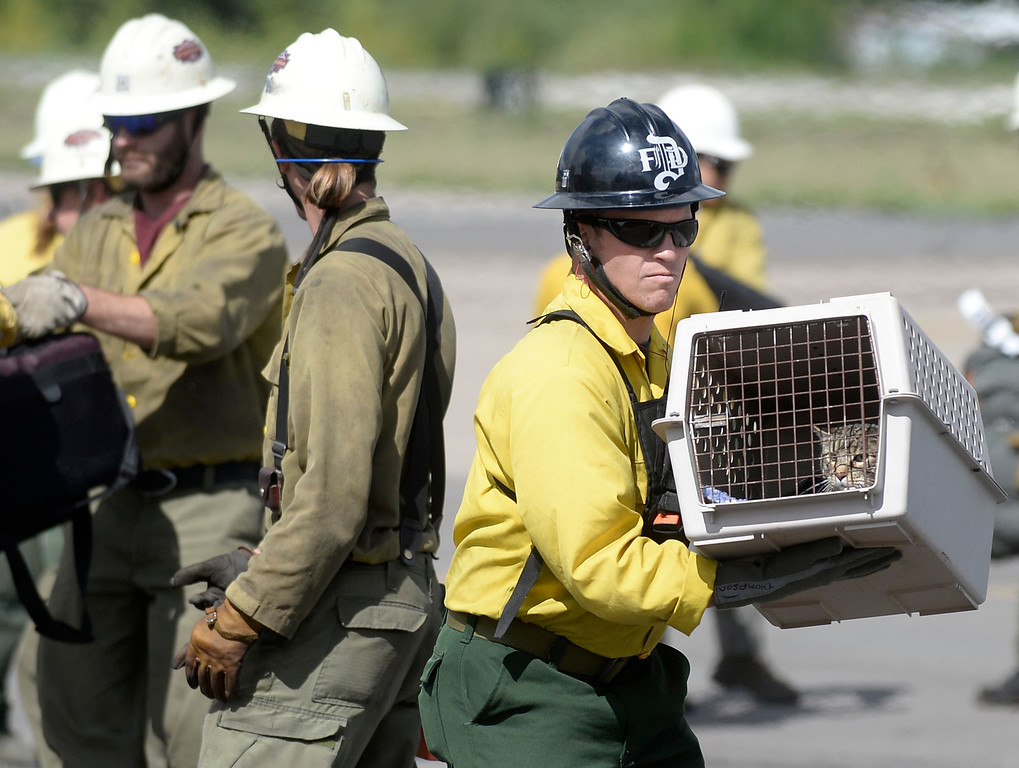 . A rescue worker carries a kennel from a helicopter with a rescued cat on Monday, Sept. 16, at the Boulder Municipal Airport in Boulder. For more photos and video of the flood rescue go to www.dailycamera.com Jeremy Papasso/ Camera