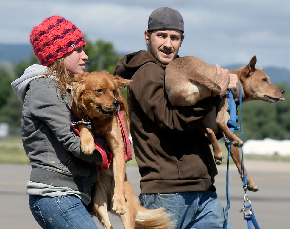 . Evacuees carry their dogs after being rescued from the flood damaged area by helicopter on Monday, Sept. 16, at the Boulder Municipal Airport in Boulder. For more photos and video of the flood rescue go to www.dailycamera.com Jeremy Papasso/ Camera