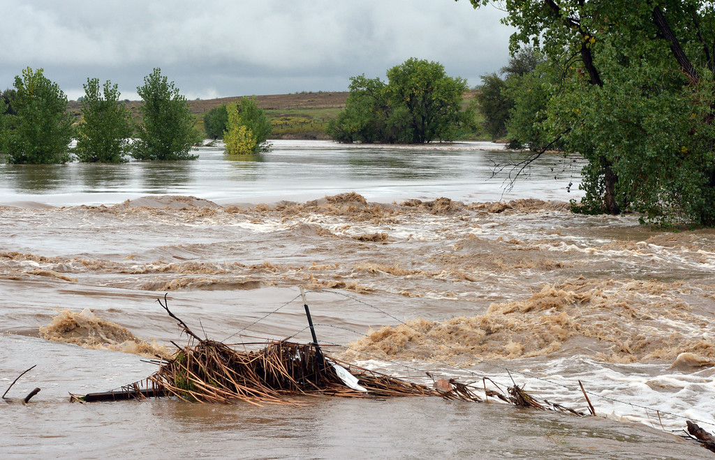 . The St. Vrain River flood waters flowing through  St. Vrain State Park near I-25 on Friday.   September 13, 2013 staff photo/ David R. Jennings