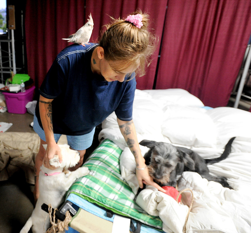 . Cortney Perez of Lyons, attends to her dog, while one of her birds rests on her shoulder at the LifeBridge Church in Longmont, Colorado on September 15, 2013. The church provides food and shelter for families and pets. Cliff Grassmick / September 15, 2013