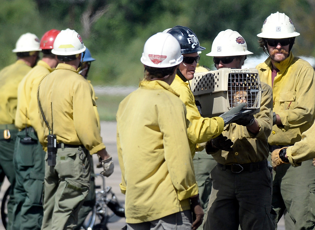 . Rescue workers carry a kennel with a cat in it after it was rescued from the flood on Monday, Sept. 16, at the Boulder Municipal Airport in Boulder. For more photos and video of the flood rescue go to www.dailycamera.com Jeremy Papasso/ Camera
