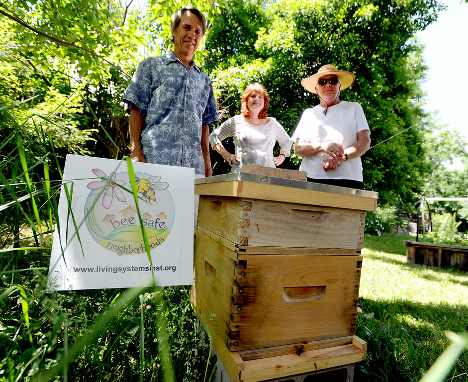 Beesafe Neighborhood