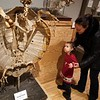 BEN GARVER — THE BERKSHIRE EAGLE<br /> Polina Mazzeo and her daughter Victoria, age 3, examine the skeleton of a sea turtle in the gallery at The Berkshire Museum, December 3, 2019.