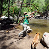 "Jon Dick throws a large branch in the creek for his dog, Burtha, to fetch.<br /> There were several visitors to Boulder Creek and Eben Fine Park on June 8, 2011, but few actually got in the water.<br /> For a video and more photos of the creek, go to  <a href=""http://www.dailycamera.com"">http://www.dailycamera.com</a>.<br /> Cliff Grassmick / June 8, 2011"