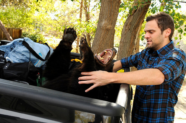 Todd Grinham, 29, of Boulder, places his valuables including his stuffed black bear into the back of his truck on Friday, Oct. 29, while evacuating due to the wildfire just west of downtown Boulder.<br /> Jeremy Papasso/ Camera