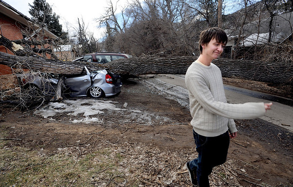 "Greg Rossin snaps his fingers as he walks away from his crushed Honda Fit.<br /> Greg Rossin was called by roommates to come home to see his ""totaled"" car. High winds blew over this tree at 802 University.<br /> For a video of Rossin, go to  <a href=""http://www.dailycamera.com"">http://www.dailycamera.com</a>.<br /> Cliff Grassmick / February 22, 2012"