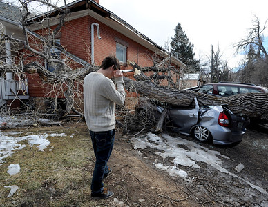 """Greg Rossin  talks on the phone about his crushed Honda Fit. Greg Rossin was called by roommates to come home to see his """"totaled"""" car. High winds blew over this tree at 802 University. For a video of Rossin, go to www.dailycamera.com. Cliff Grassmick / February 22, 2012"""