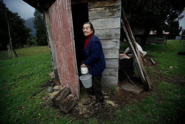Chile Volcano.JPEG-05df1.JPG Rudith Hernandez works at her farm in El Caulle near the international border cross Cardenal Samore after the eruption of the Puyehue-Cordon Caulle volcano in Chile, Wednesday June 8, 2011. The volcano erupted Saturday after remaining dormant for decades, causing the evacuation of about 3,500 people in the nearby area and carrying ash across the Andes to Argentina. (AP Photo/Roberto Candia)