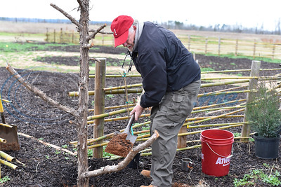 Caddo Mounds State Historic Site manager Tony Souther digs a hole to plant a native Muscadine grape vine during a re-opening ceremony for the site in Alto on Saturday, January 11. The site was destroyed by tornadoes in April of 2019. (Jessica T. Payne/Tyler Morning Telegraph)