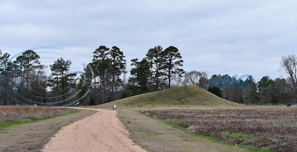 A Caddo mound stands in the distance at the Caddo Mounds State Historic Site on Saturday, January 11 where a re-opening ceremony was held. (Jessica T. Payne/Tyler Morning Telegraph)