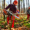 """KRISTOPHER RADDER — BRATTLEBORO REFORMER<br /> Trevor Cloutier, a student at Windham Regional Career Center's Forestry Class, shaves off the bottom as he works on cutting a """"spring"""" tree during training at the Brattleboro Watershed Forest on Wednesday, Nov. 6, 2019."""