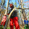 """KRISTOPHER RADDER — BRATTLEBORO REFORMER<br /> Austin Young, a student at Windham Regional Career Center's Forestry Class, shaves off the bottom as he works on cutting a """"spring"""" tree during training at the Brattleboro Watershed Forest on Wednesday, Nov. 6, 2019."""