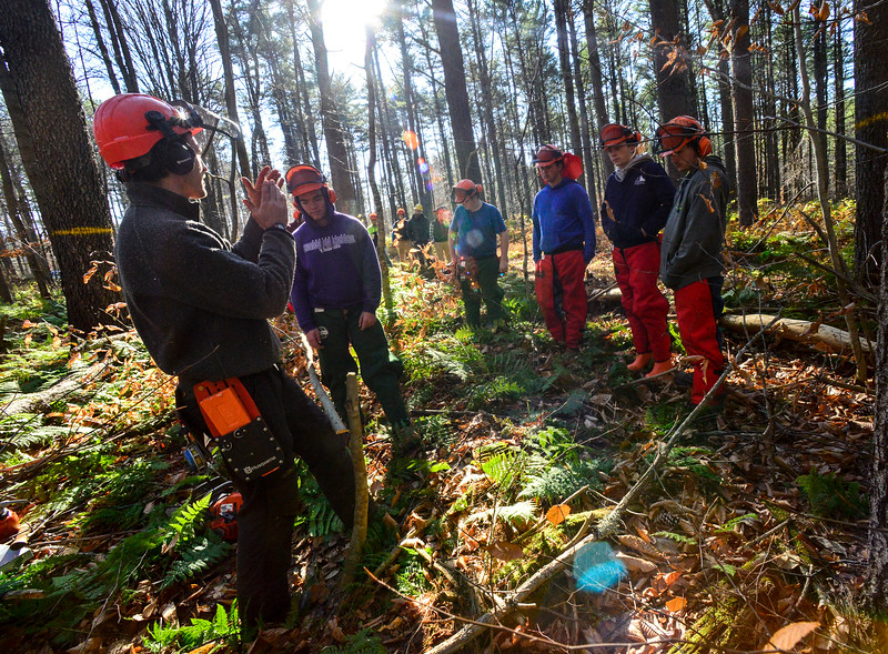 """KRISTOPHER RADDER — BRATTLEBORO REFORMER<br /> Kyle Brennan, from Northeast Woodland Training, tells a group of students from the Windham Regional Career Center's Forestry Class how to properly cut a """"spring"""" tree without hurting someone at the Brattleboro Watershed Forest on Wednesday, Nov. 6, 2019."""