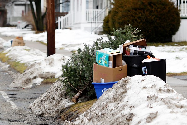 Christmas Tree Disposal in Pittsfield-010417