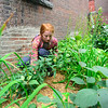 KRISTOPHER RADDER — BRATTLEBORO REFORMER<br /> Leah Sliver removes weeks from a flower bed as volunteers work on cleaning up for the second time in three weeks, what they dubbed Alley Lane, next to the Transportation Center, on Wednesday, July 31, 2019.