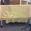 Investigators believe this blanket could lead them to where Amy Mihaljevic, 10, of Bay Village was murdered in 1989. (Kaylee Remington — The Morning Journal)