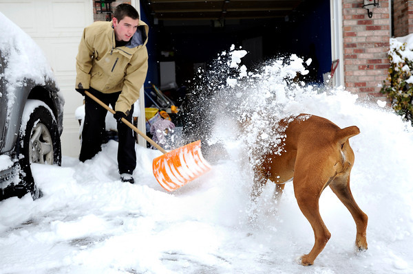 "Darragh O'Neill, 20, shovels snow into the face of his dog Kerry on Ridgeview Road in Louisville on Thursday, Dec. 22. For more photos of the storm go to  <a href=""http://www.dailycamera.com"">http://www.dailycamera.com</a><br /> Jeremy Papasso/ Camera"