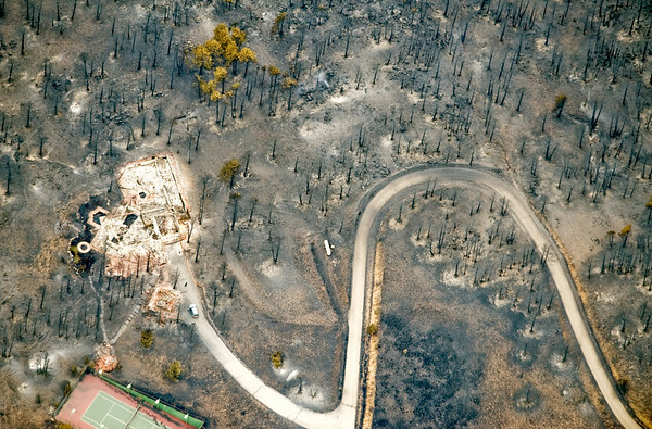 A few trees survived next to a home that was destroyed by the  Fourmile Canyon fire in Boulder, Colorado September 8, 2010.  CAMERA/Mark Leffingwell