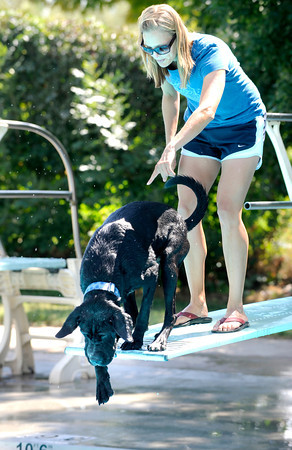 "LeeAnn Baronett tries to convince her dog Elmer to try the diving board during Dog Dayz at Scott Carpenter Pool in Boulder. Elmer did finally jump from the side of the board.<br /> on Friday, September 9, 2011. FOR MORE PHOTOS AND A VIDEO FROM DOG DAYZ GO TO  <a href=""http://WWW.DAILYCAMERA.COM"">http://WWW.DAILYCAMERA.COM</a><br /> Photo by Paul Aiken / The Camera / September 6 2011"